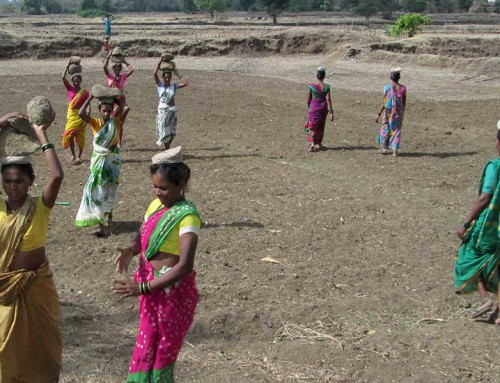 PRASAD's Water and Soil Conservation Efforts